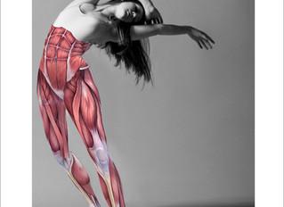 Το Σωματείο Καθηγητών Χορού διοργανώνει το σεμινάριο: Ο χορευτής ως Αθλητής - με έμφαση στην επιστημ