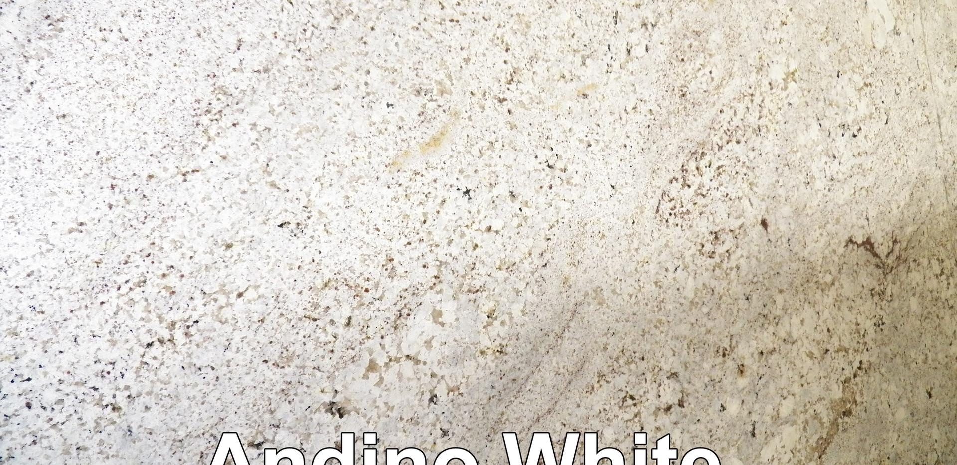 Andino White.jpg