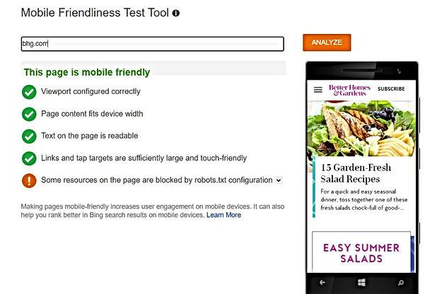 mobile friendly test tool.jpg