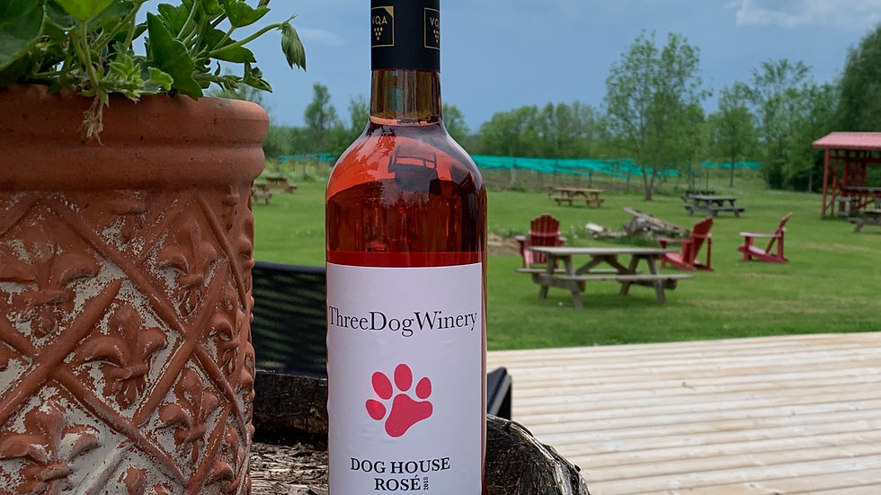 2019 Dog House Rose