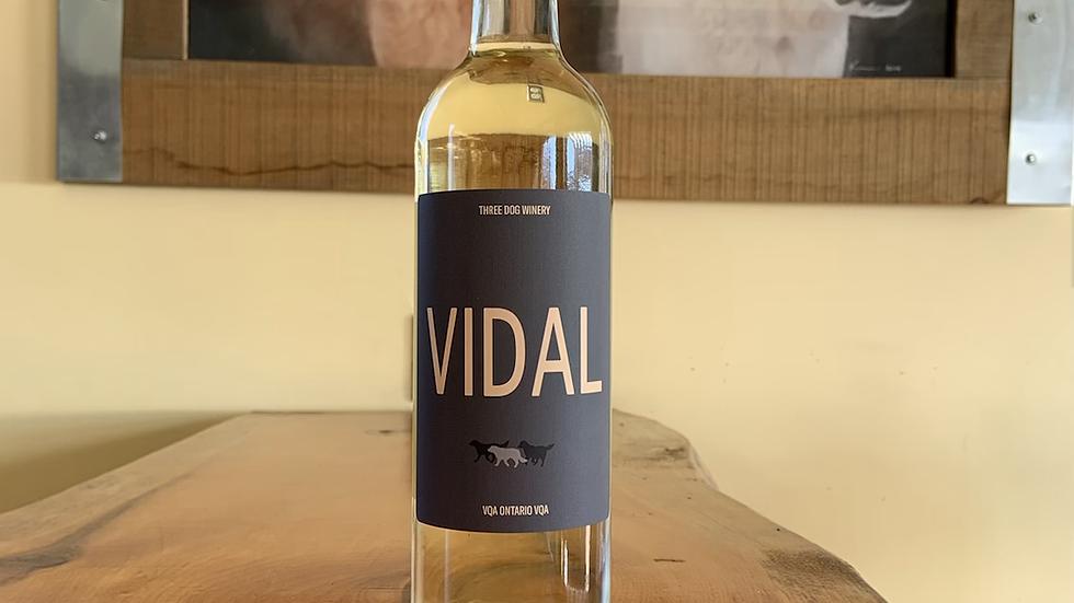 2019 Vidal