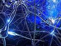 電流細胞.jpg