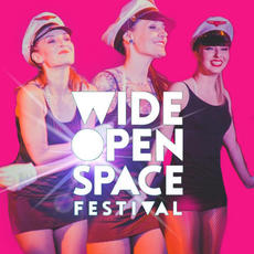 WIDE OPEN SPACE FESTIVAL