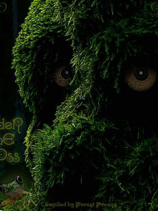 Under The Moss Vol.1 - Forest Freaks Records