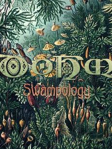Dohm - Swampology - Ektoplazm.com