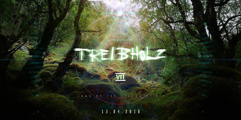 "Treibholz VII - ""Lawn Of The Sylvan Spirit"" - DOHM live"