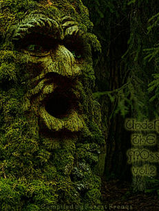 Under The Moss Vol.2 - Forest Freaks