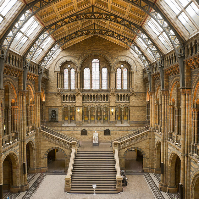 The Natural History Museum.jpeg