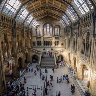 natural-history-museum-2.jpg