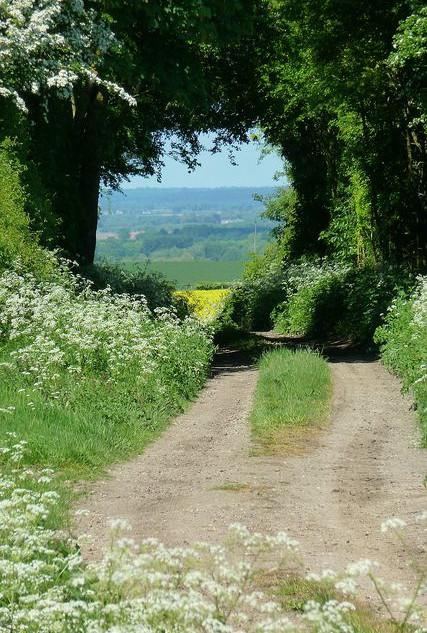 Country-Roads_19.jpg