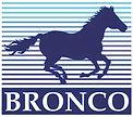 BroncoModels.jpg