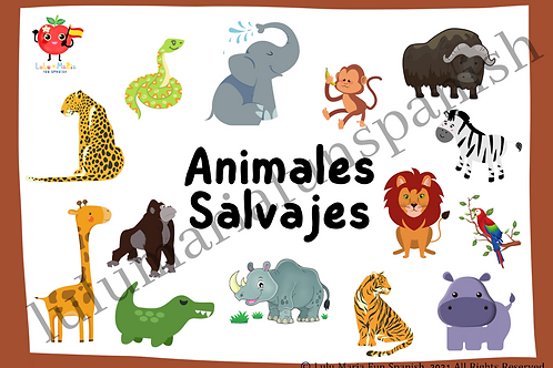 Wild Animals - Animales Salvajes - Flashcards