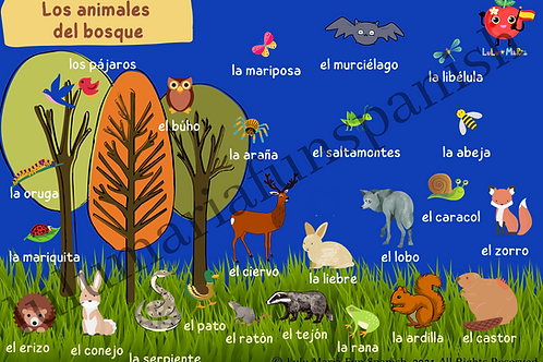 Animales del Bosque - Forest Animals - Poster