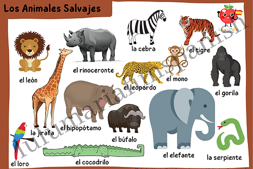Wild Animals - Animales Salvajes - Package
