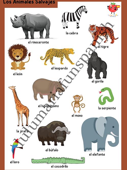 Jungle Animals - Animales Salvajes - Poster