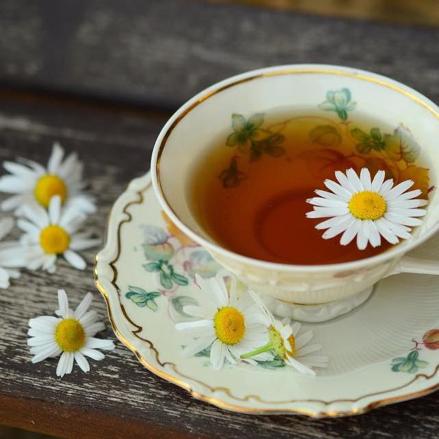 Rest, Restore & Rejuvenate w/ Wrapped In Light & Apothica Teas