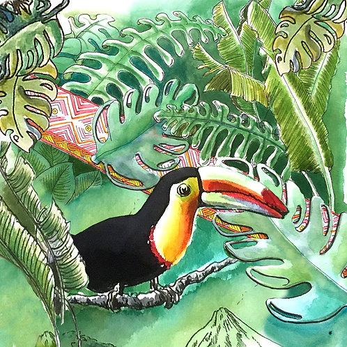Carte postale tropicale toucan