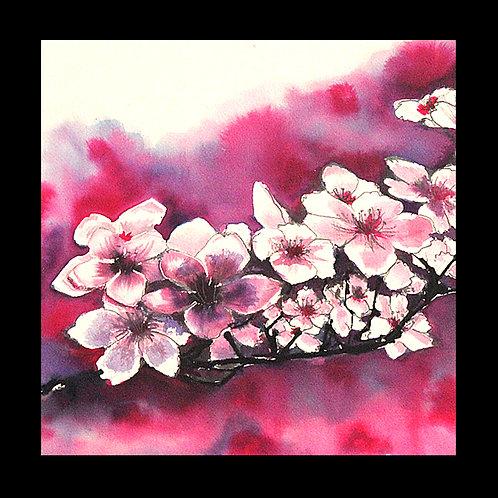 Carte postale Japon Sakura
