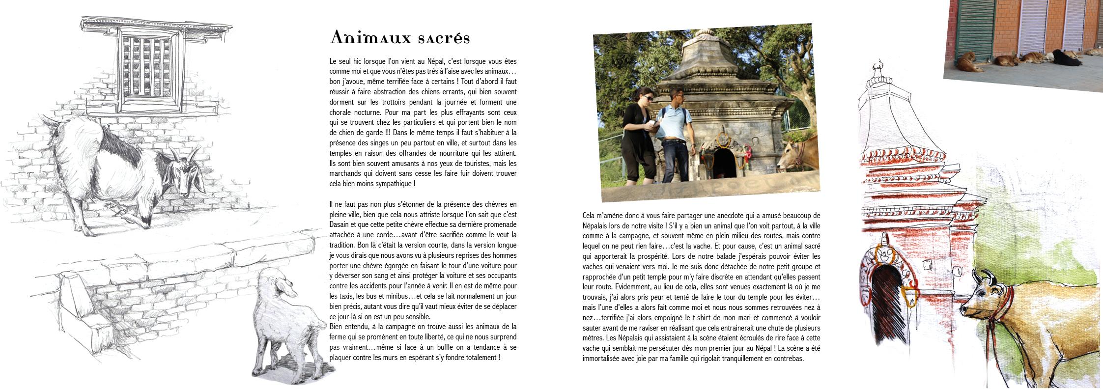 carnet de voyage Népal