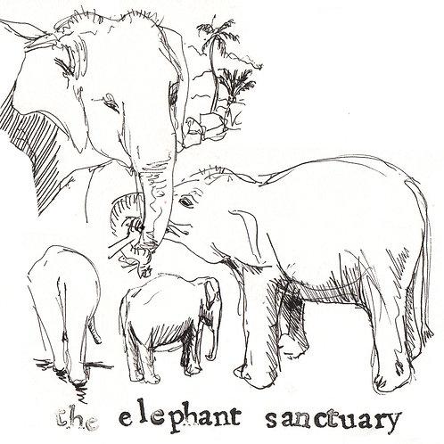 Carte postale Sri Lanka éléphants