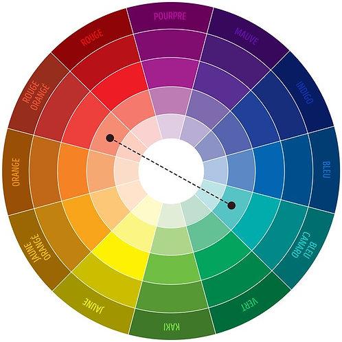 Cours en ligne Maîtriser la couleur