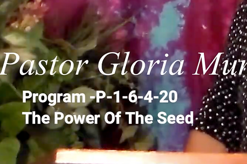 Power of the Seed