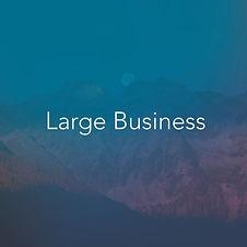 large business.jpg