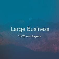 large businessp.jpg