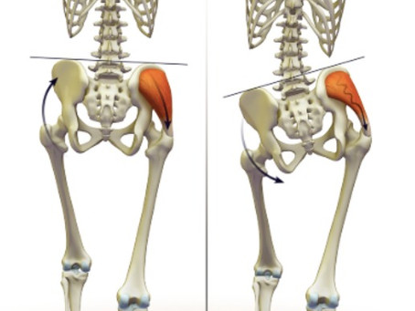 The Relationship Between Weak Glutes and Low Back Pain