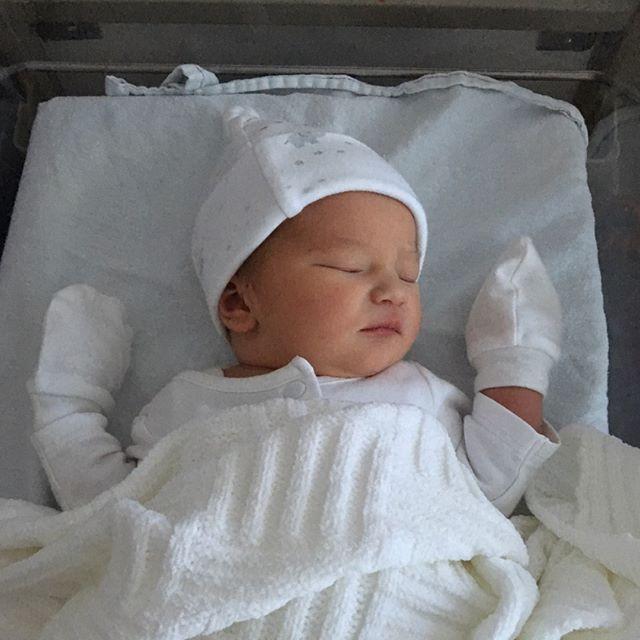 A newborn's head