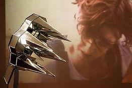 mirrorflower3.JPG