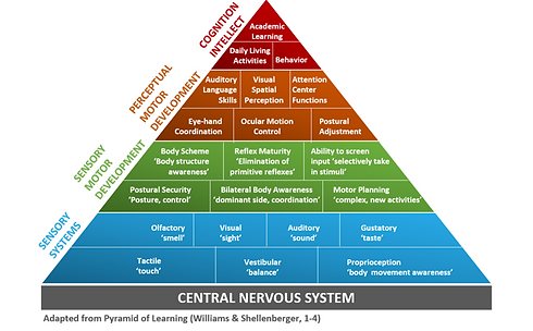 Developmental OT Pyramid.png