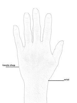 Hand B.jpg