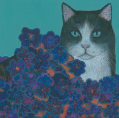 Cat and Purple Blooms