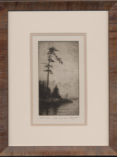 Pine Drypoint -  #5/20  STATE PRINT