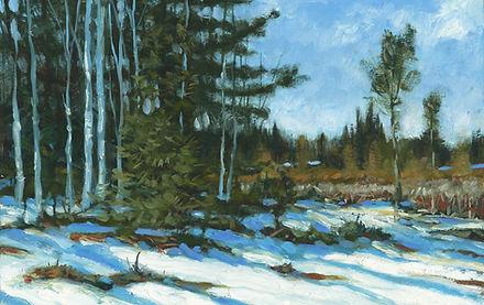 Adirondack Marsh  .jpg