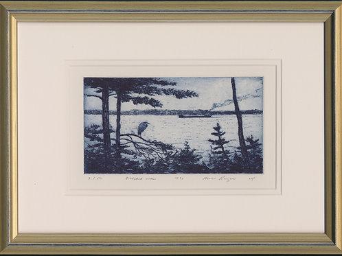 Birdseye View - Original Drypoint #3/50