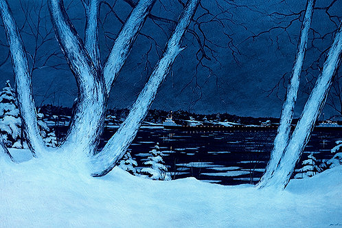 Freighter in the Ice Flows