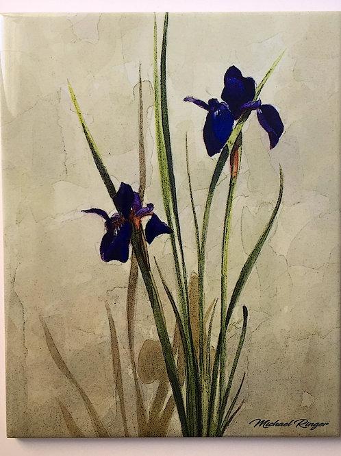 """Siberian Iris 8"""" X 10"""" Tile"""