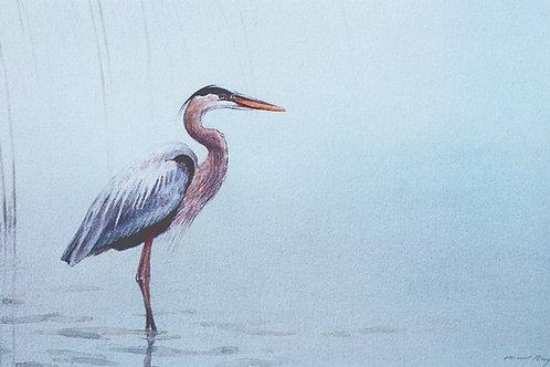 Standing Heron & Reeds