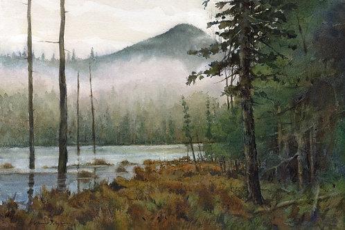 Lonesome Pond