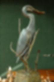 Bronze 4B Heron & Sunfish.jpg