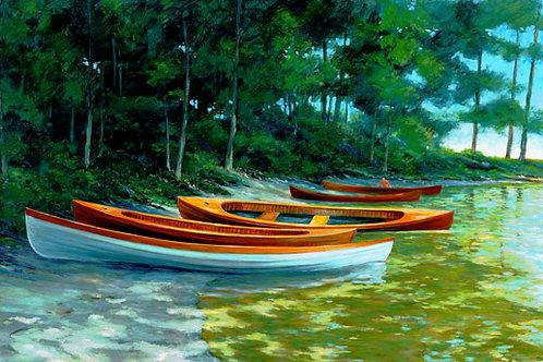 Sailing Skiffs
