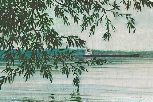 Willows Grasse Point