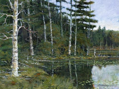 Wynken Pond