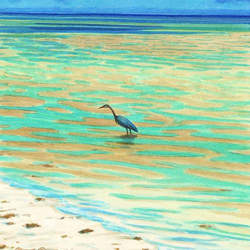 Key Heron