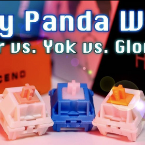 Everything you always wanted to know about Holy Pandas (and were afraid to ask)!