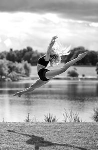 Tony Dale Photography