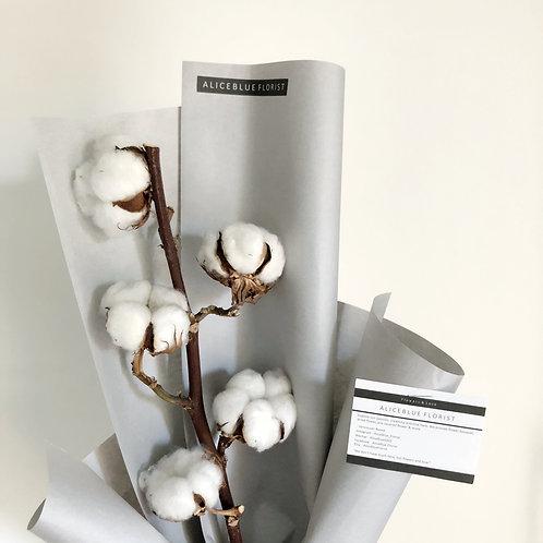 Single Stem Cotton Bouquet (Grey)
