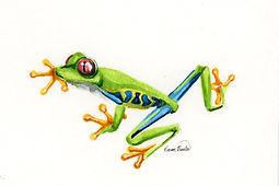 Tree Frog Ink Painting